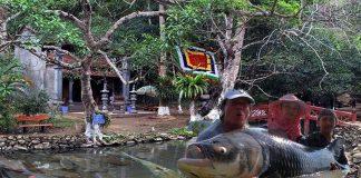 Giai thoại khó lý giải về suối cá thần ở Thanh Hóa